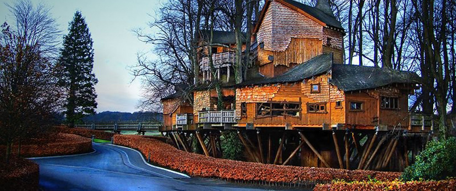 Image result for Alnwick Garden Treehouse